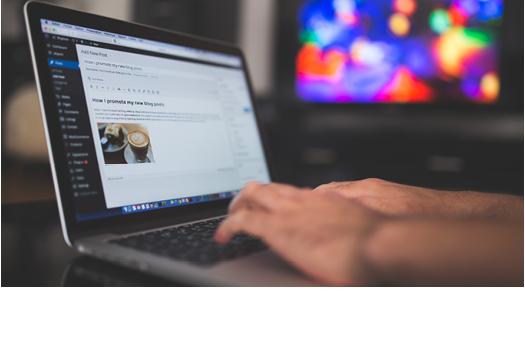 Real Estate Blog Management